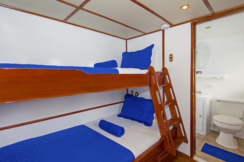 Cabin - G Adventures Galapagos